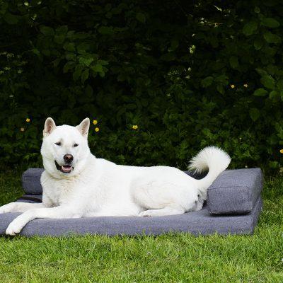 Honden kussens sets