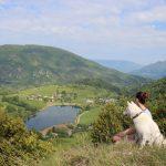 6 tips voor een relaxte vakantie met je hond